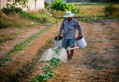 Tarım Aracıları nedir? ne iş yaparlar ?